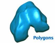 UNIVFL-florida-Knee-polygons.jpg