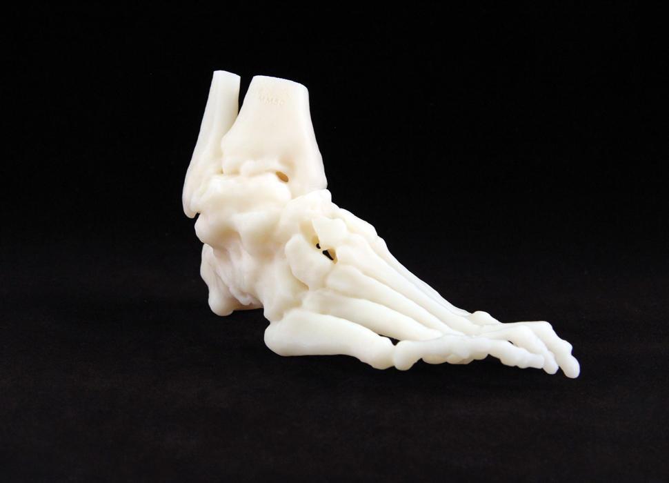 SLA White Foot