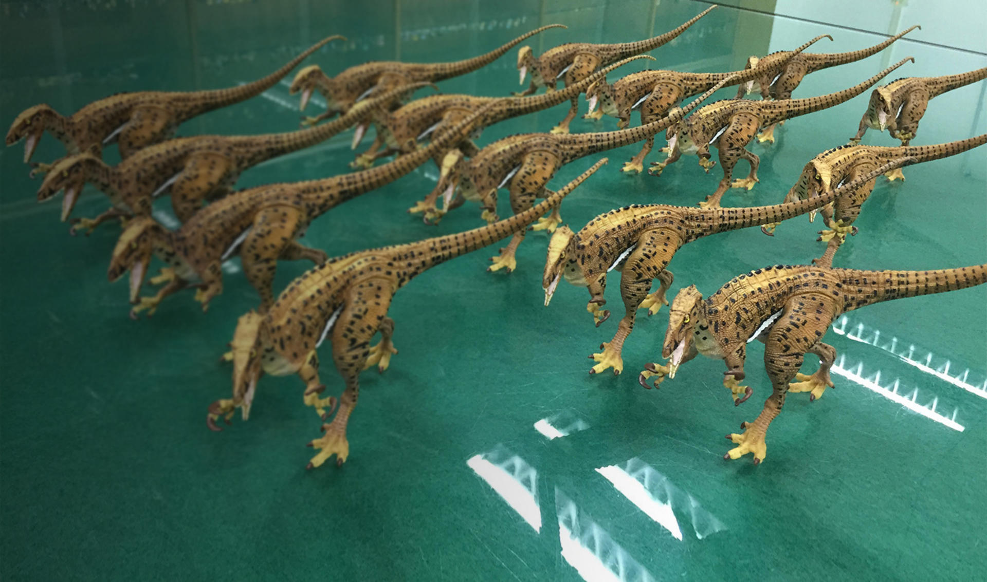 Customer Story 3D Printing Enables Australian Museum to Flawlessly Reproduce Fierce Dinosaur top banner